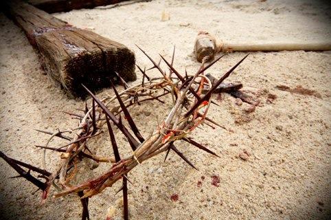 Devocional Diario Martes Septiembre 10 Por Su Llaga Fuimos Nosotros Curados Pagina Del Pastor Jesus Figueroa