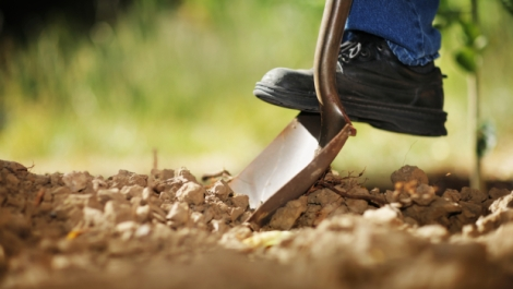 foot_on_shovel_digging_backyard_620x350