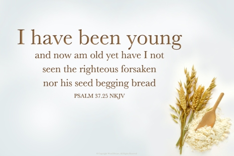 b.Psalm37.25