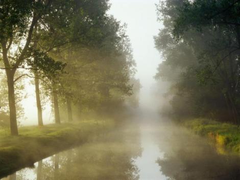 neblina-prana-salud-taoista