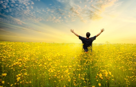 man in yellow flower  field under beautiful sky