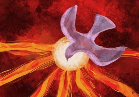 paloma-emblema-del-espiritu-santo