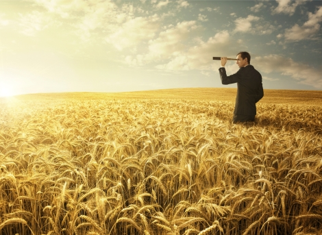 Young businessman in the wheat field searing for the new opporunites