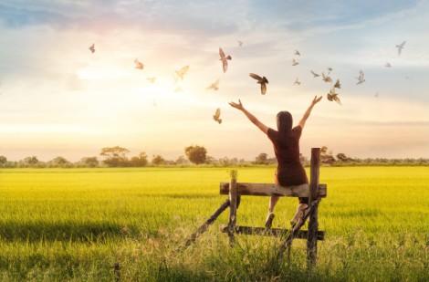 mulher-rezando-e-passaro-livre-apreciando-a-natureza-no-fundo-por-do-sol-conceito-de-esperanca_34200-192
